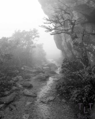 Grandfather's Mountain in Linville, North Carolina.